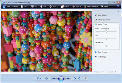 Vista's Photo Gallery application
