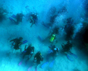 Divers pausing in a circle