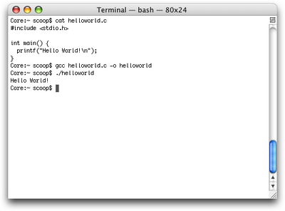 A terminal window using fixed-width fonts