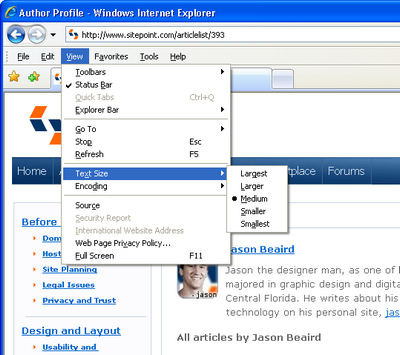 Text Size menu in Internet Explorer