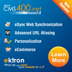 ektron - what do you want your web site to do?
